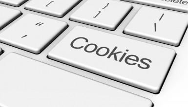 Çerez (Cookie) Kullanımı